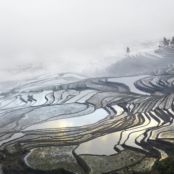ariel photography Rice Terraces, (Duoyishu), Yunnan, China, Burdeny