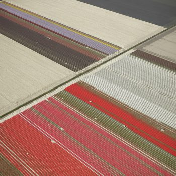 netherlands aerial David Burdney Veld Series, Abstract photography