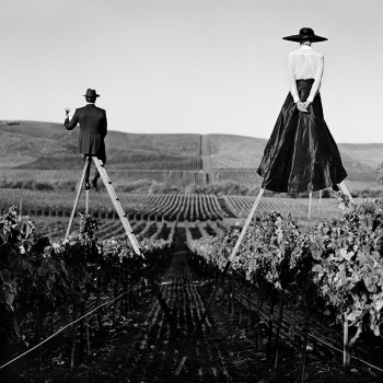 humor black and white photography wine vineyard surreal photography