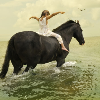 Tom Chambers Marwari Stallion horse girl color photomontage