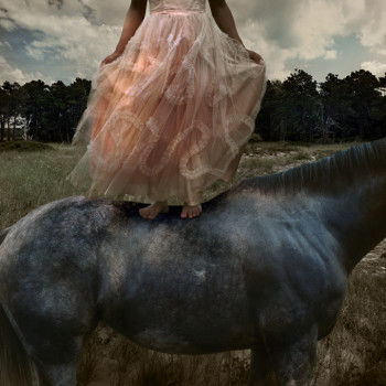 girl on horse Tom Chambers buy photography prints