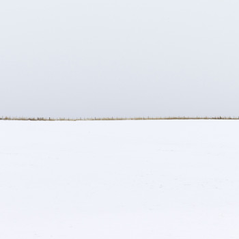 minimal photography, snowscapes, wirth photography