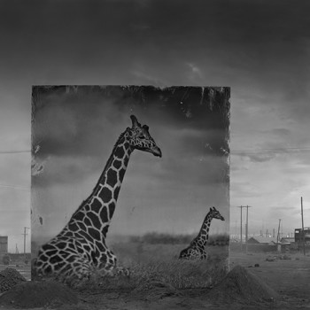 Inherit the Dust, African photography contemporary photography sun valley art gallery