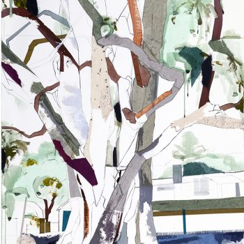 Witness Trees of Texas mixed media tree painting contemporary landscape