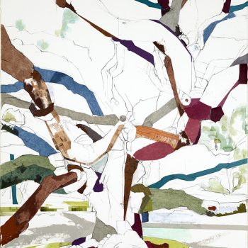 Witness Trees of Texas contemporary landscape mixed media tree painting Jill Lear