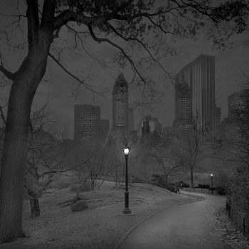 central park traditional photographic methods, photographic process, process based art, gilman gallery, nighttime photo silver gelatin photograph vintage print