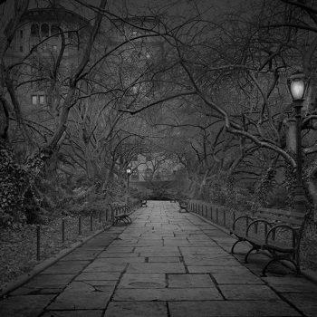central park NYC Michael Massaia contemporary photography