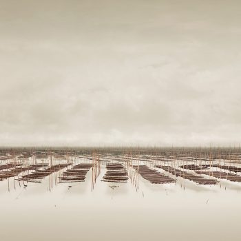 seaweed farm south china sea gilman burdeny minimal photography buy