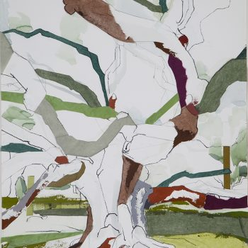 Jill Lear, tree paintings nature, jill lear, mixed media, works on paper
