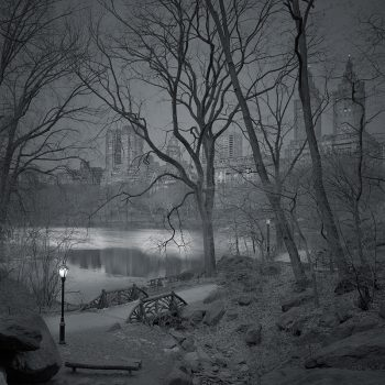 Michael Massaia, The ramble, new york city at dawn, black and white silver gelatin prints, idaho art gallery