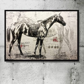 Ashley Collins horse paintings, gestural, encaustic, black white and red