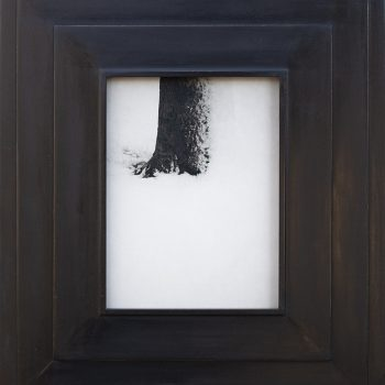 jefferson hayman, images of winter, contemporary art gallery, gilman gallery,