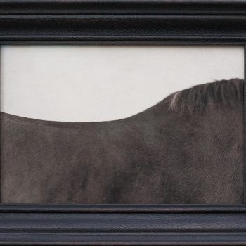 art in sun valley, small framed photography for sale, new york artist