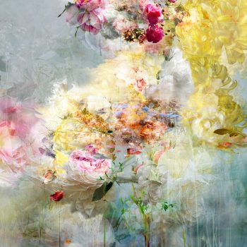 Song for dead heroes, flowers in photography, isabelle menin, gilman contemporary