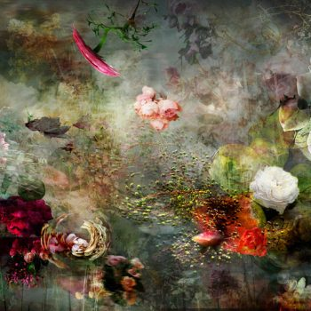 isabelle menin,color photorgaphy, sun valley art gallery, large scale photography