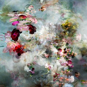 menin isabel, gilman contemporary, floral photography
