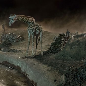 giraffe, pollution, fine art photography, famous contemporary photorgapher, nick brandt.