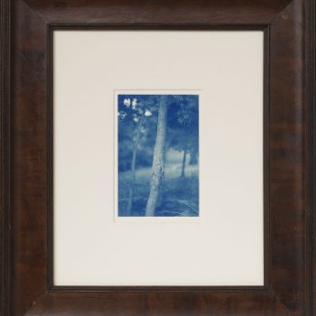 blue tinted photographs, vintage frame, contemporary art,