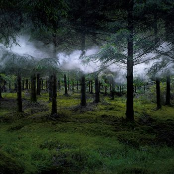 ellie davies, landscape photography, gilman contemporary